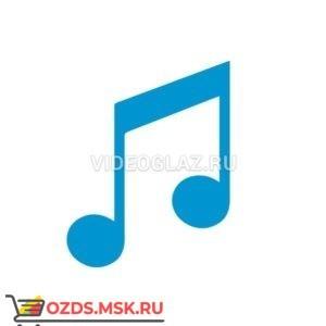 MACROSCOP LS Модуль обработки аудио потоков
