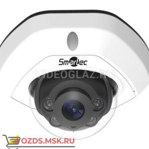 Smartec STC-IPM3408A4 Estima: Купольная IP-камера