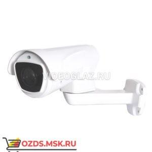 AltCam ICV24IR-PTZ: IP-камера уличная