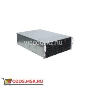 Divitec DT-NVS256SU: IP-видеосервер