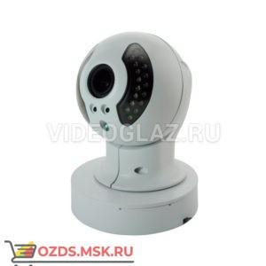 Space Technology ST-400 IP: IP-камера уличная