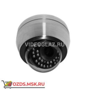 MicroDigital MDC-SSi8290TDN-24A: Купольная IP-камера