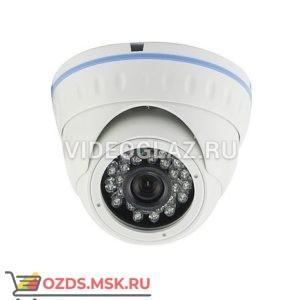 AltCam IDMF24IR: Купольная IP-камера