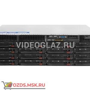 Divitec DT-NVS32U: IP-видеосервер