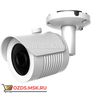 AltCam ICF51IR: IP-камера уличная