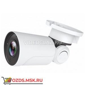 Alteron KIP52: IP-камера уличная
