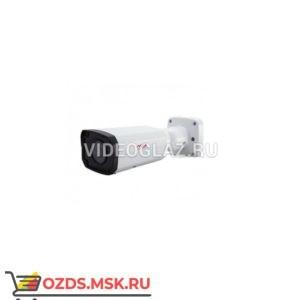 MicroDigital MDC-M6040VTD-42: IP-камера уличная