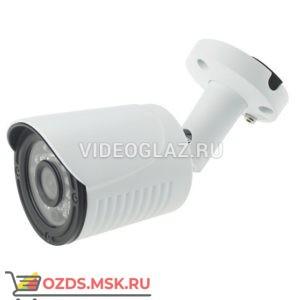 AltCam ICF24IR-2: IP-камера уличная