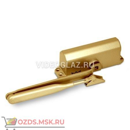 Dorma TS77 EN3 золотой (76050102) Стандартный доводчик