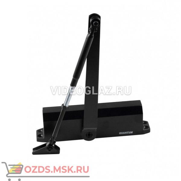 Quantum QM-D230EN5(черный) Стандартный доводчик
