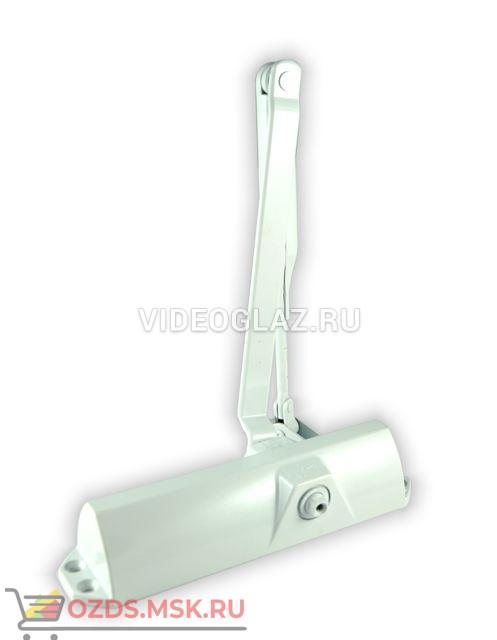 Dorma TS68 белый (66400111) Стандартный доводчик