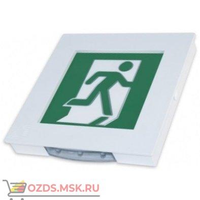 Электротехника и Автоматика МИНИ-24 Человек вправо в дверь Табло