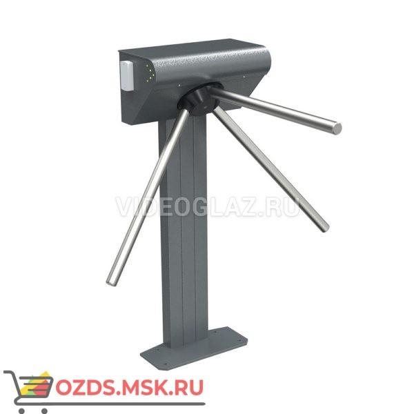Ростов-Дон Т9М1 IP (MATRIX-II EH) Комплект Турникет - проходная