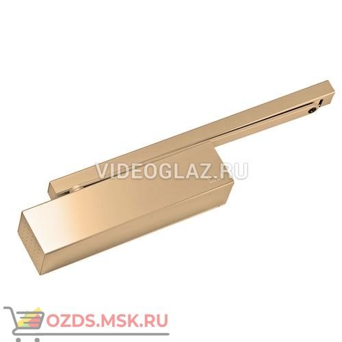 Dorma TS92 полир. латунь(42020105) Стандартный доводчик