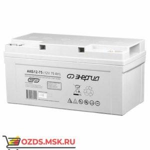 Энергия АКБ 12-75 Е0201-0021 Аккумулятор