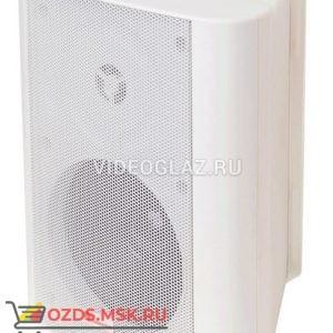 Полисервис АСШ-10-30100 (НП1) Оповещатель речевой