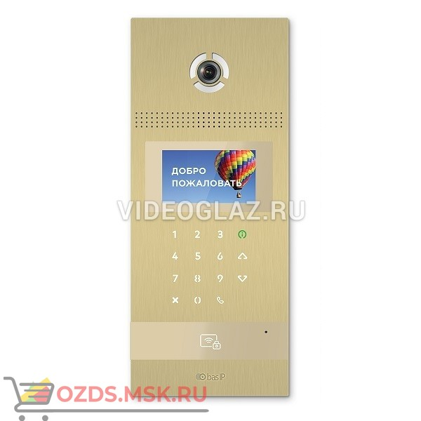 BAS-IP AA-12FB GOLD Вызывная панель IP-домофона