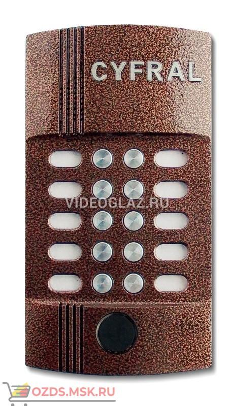 Цифрал M-10MP Вызывная панель аудиодомофона